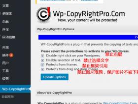 WP-CopyRightPro 禁止复制、禁止选择、禁止引用 、保护图片
