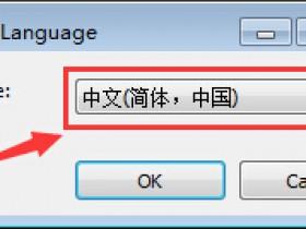 高级文件重命名工具(Advanced Renamer) v3.86.1 中文绿色便携商业版