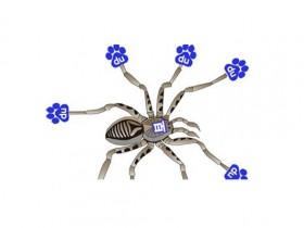 百度spider专家现场QA集锦:抓取建库篇