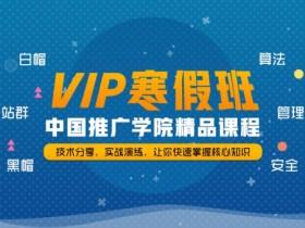 推广学院实战SEO寒假班VIP教程(更新中)
