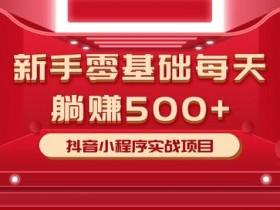 柚子小白零基础每天躺赚500+抖音小程序实战项目