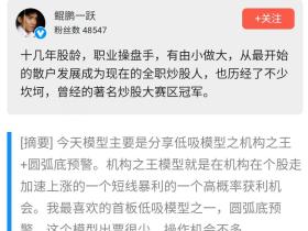 【鲲鹏一跃】2021年经典预判低吸模式之机构之王 视频+文档